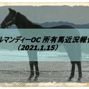 ノルマンディーOC 所有馬近況報告(2021.1.15)