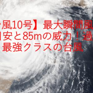 【台風10号】最大瞬間風速の目安と85mの威力!過去最強クラスの台風