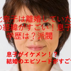 【画像】高橋比奈子は離婚していた?結婚の経緯がすごい!息子は誰?学歴と派閥