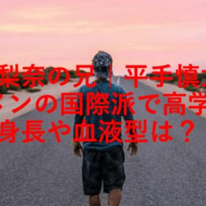 平手友梨奈の兄|平手慎太郎はイケメンで国際派の高学歴?身長や血液型は?