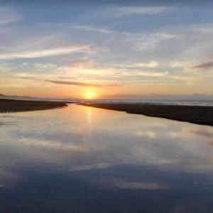 千葉県南房総市白子 三島海岸の広大な砂浜に散らばる沢山の流木たち