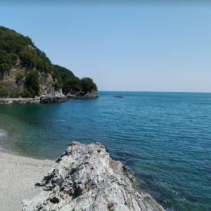 徳島県徳島市大原町浜 大神子海岸遊歩道の先 断崖に囲まれた砂浜にある小枝流木