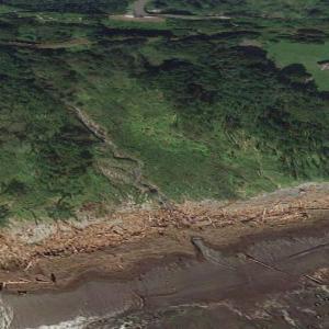 【海岸の流木】岩手県九戸郡野田村玉川 キャンプ場のそばの浜に流れ着いた大きな流木