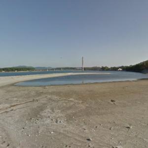 【海岸の流木】鹿児島県南さつま市加世田高橋 サンセットブリッジを望む長い砂浜に打ち上げられた流木