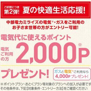 【2000円もらえる】中部電力の夏キャンペーンがお得すぎるっ☆