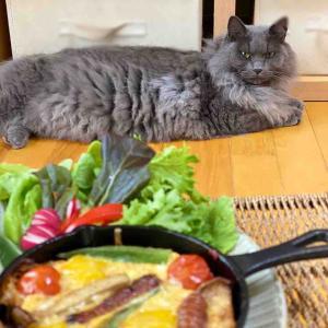 ダイソースキレットと毎日定食☆楽しい毎日の毎日食堂