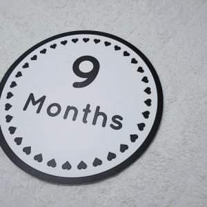 生後9ヶ月、成長記録備忘録