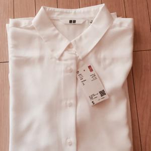 *何年か振りに買った白シャツはユニクロさんで*