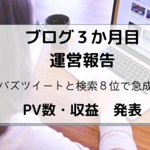 ブログ3か月目|PV数・収益発表!バズツイートとロングテールキーワードでブログ成長