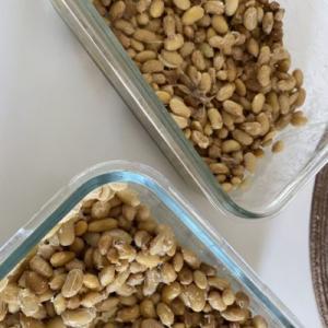 【海外在住】納豆を手作りしてみた!手作り納豆のレシピ紹介します。