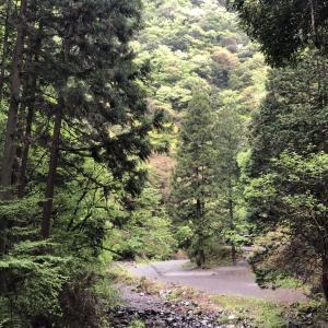 「ヒロシのぼっちキャンプ」に登場、東京都桧原村ロッヂ神戸岩のサイトはプライベート感抜群!