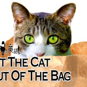 洋書に出てくる英語表現0176:let the cat out of the bag【おすすめ英語フレーズ編156】