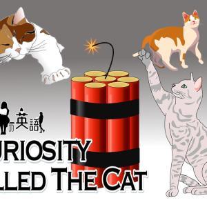 洋書に出てくる英語表現0178:curiosity killed the cat【おすすめ英語フレーズ編158】