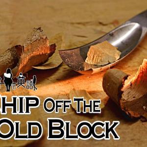 洋書に出てくる英語表現0180:chip off the old block【おすすめ英語フレーズ編160】