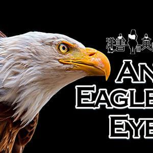 洋書に出てくる英語表現0185:an eagle eye【おすすめ英語フレーズ編165】
