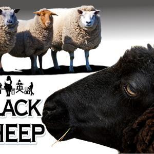 洋書に出てくる英語表現0190:black sheep【おすすめ英語フレーズ編170】