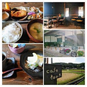 【cafe 柚の木】ジブリ的な郷愁感も味わえるオシャレ古民家カフェ(茨城県笠間市)