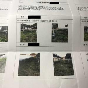 発電所メンテナンス 除草・パネル清掃報告