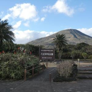 冬の「 八丈植物公園 」