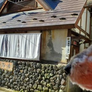 ❝無料の共同浴場 関乃湯❞   愛犬とおでかけ-群馬県観光🎵  2021年7月17日⑤