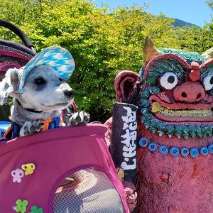 ❝鬼押出し園(魔除け鬼と友達 編)❞   愛犬とおでかけ-群馬県観光🎵  2021年7月17日⑨