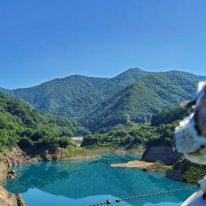 ❝奥四万湖❞   愛犬とおでかけ-群馬県観光🎵  2021年7月18日②