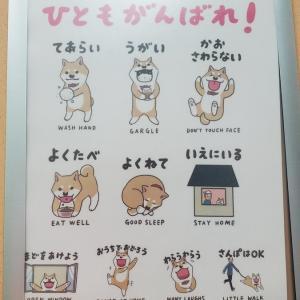 """❝犬に """"うがい""""は できるかな?(^▽^;)❞"""