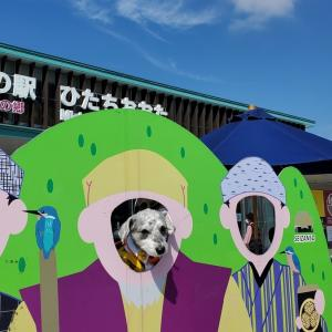 道の駅《ひたちおおた》 愛犬とおでかけ-茨木県観光🎵 2021年10月8日①