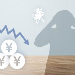株式投資【失敗編】 vol.3 【コロナ・ショック ~回避不可!?の全体攻撃~】
