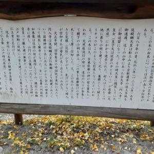 ウォーキング(^▽^)/(^▽^)/・・㉜西御門の大イチョウ
