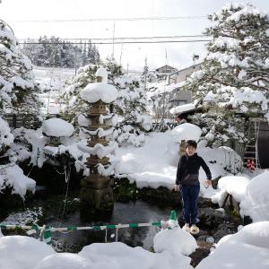 Q今日の写真 雪の浮遊