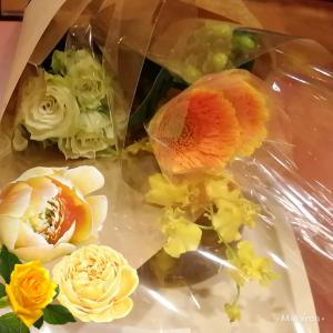ふーちゃんにお花を供えて