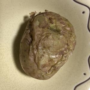 【今日のアテ】簡単で美味しいジャガイモ料理