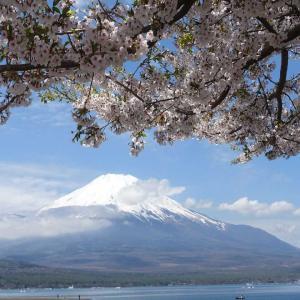 今日は何の日?~6月22日 富士山・世界遺産登録の日~