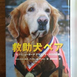 犬の物語~9.11の記憶『救助犬ベア』~