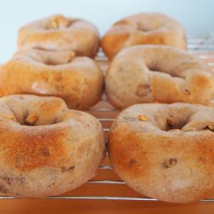 【レシピあり】自家製酵母でもイーストでも◎栗の渋皮煮で絶対おいしいベーグルを作ろう!