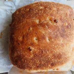 トウモロコシのフォカッチャ×ルヴァンリキッド◇クリームパン×酒種