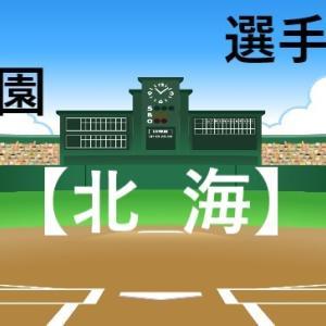 【北海高校】選手一覧(メンバー)夏の甲子園2021高校野球,南北海道代表の予選結果まとめ