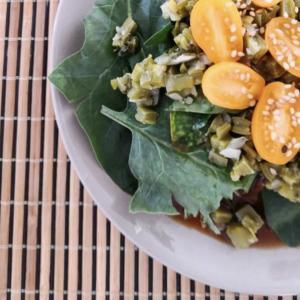 Nopal・うちわサボテンの和食ミックスレシピ