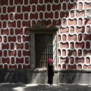 メキシコ8年目とブログ1周年