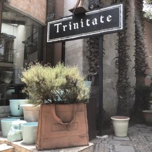 駐在妻御用達の食器を買う –Trinitate–