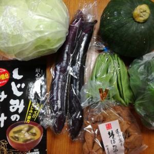 下肢静脈瘤対策の着圧ソックスと頂き物の野菜