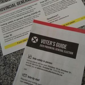 投票に行きましょう!?州知事選
