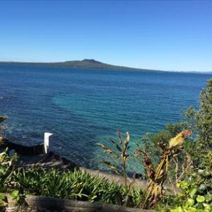 ニュージーランドでFX 2020年10月第1週
