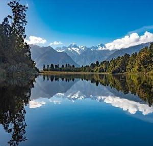 ニュージーランドでFX 2020年10月第3週