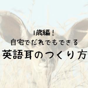 【1歳編】自宅でだれでもできる英語耳のつくり方