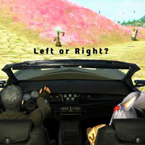 左右盲って知ってる?