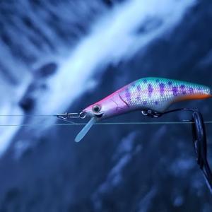 【渓流釣り】神奈川県世附川へ初釣行。さすがの魚影の濃さでした。