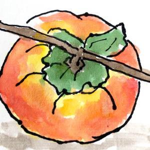 柿酢と蜂蜜とプーアル茶