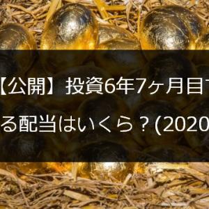 【公開】投資6年7ヶ月目で貰える配当はいくら?(2020/10)